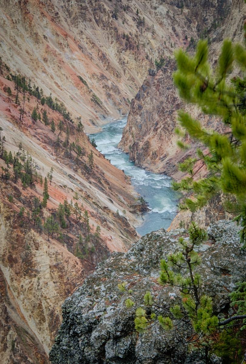 41-Yellowstone