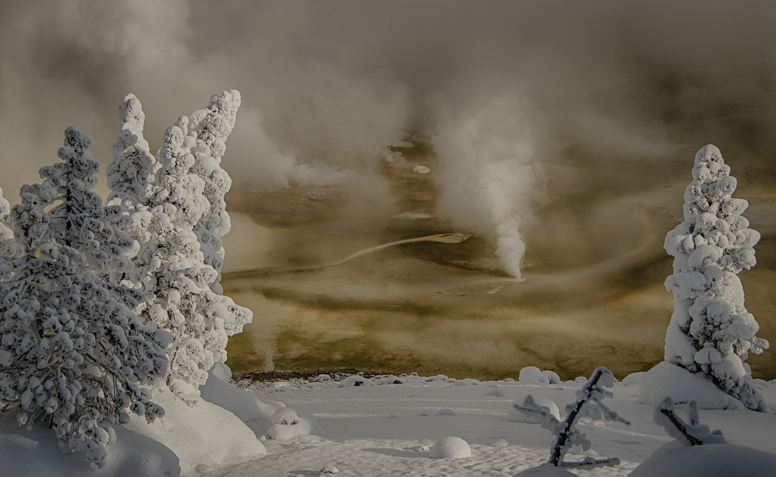 46-Yellowstone