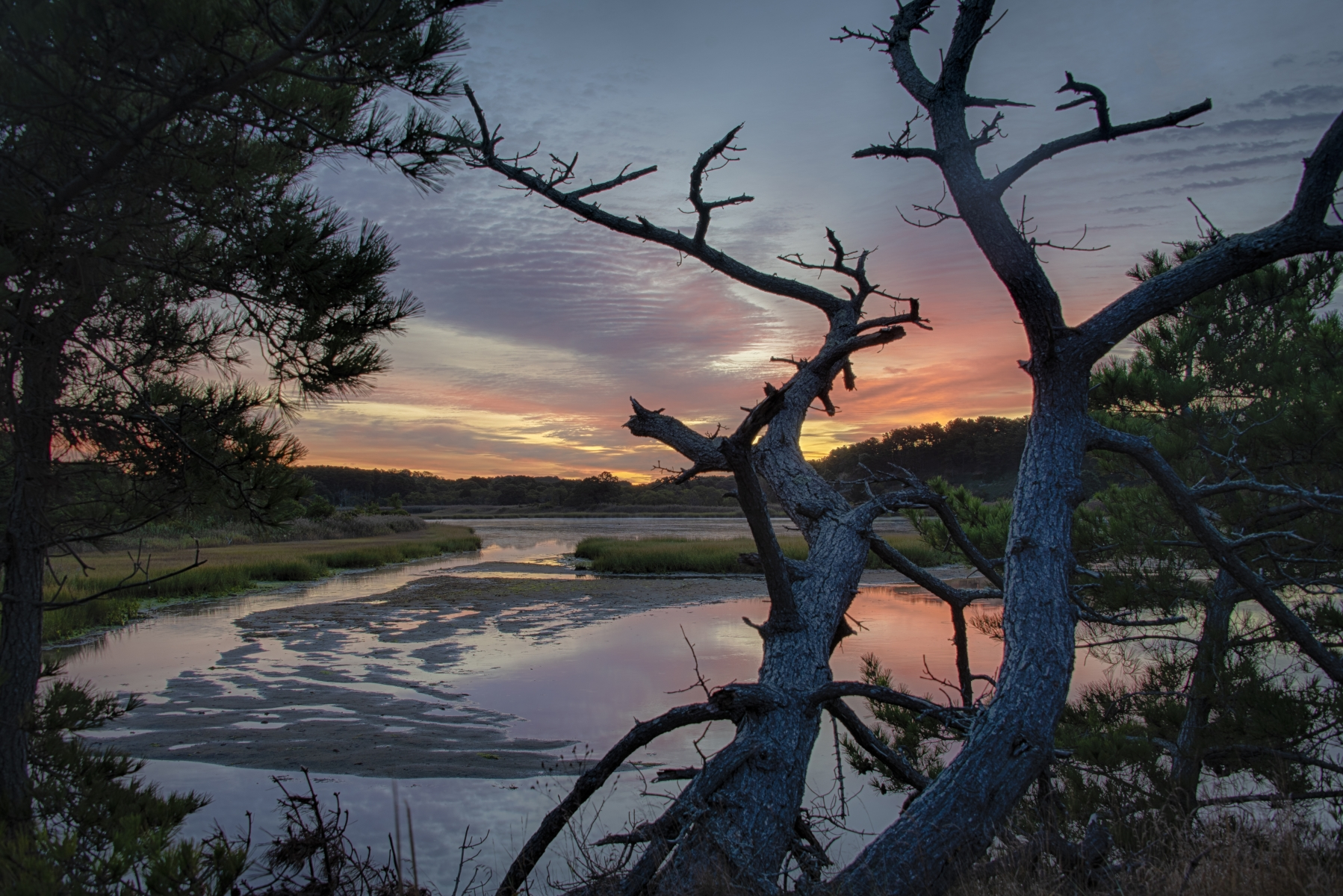 Wellfleet Sunrise